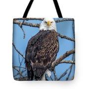 Eagle Mean Muggin Me Tote Bag
