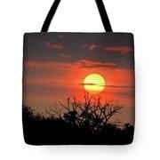 Eagle Nest Sunrise Tote Bag