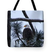 Eagle On A Frosted Limb Tote Bag