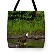 Eagle On A River Rock Tote Bag