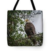 Eagle Feet Tote Bag