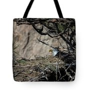 Eagle On The Nest, No. 3 Tote Bag