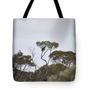 Eagle On The Nullarbor  Tote Bag