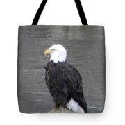 Eagle On The River Tote Bag