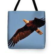 Eagle Over The Fox Tote Bag