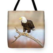 Eagle Overlooking Colorado River Tote Bag