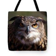 Eagle Owl 3 Tote Bag