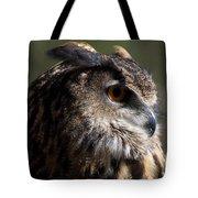 Eagle Owl 4 Tote Bag