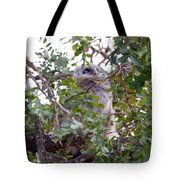 Eagle Owl Chick Tote Bag