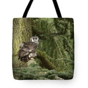 Eagle Owl In Forest Tote Bag