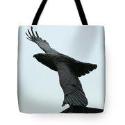 Eagle Park Tote Bag