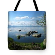 Eagle Ridge View Tote Bag