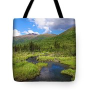 Eagle River- Alaska Tote Bag