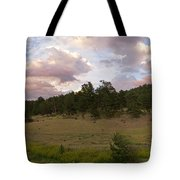Eagle Rock Estes Park Colorado Tote Bag
