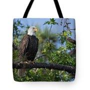 Eagle Series 13 Tote Bag