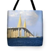 Eagle Under The Sunshine Tote Bag by David Lee Thompson