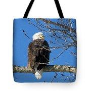 Eagle Watch Tote Bag