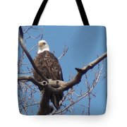 Eagle Watching Tote Bag