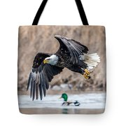 Eagle With Lunch Tote Bag