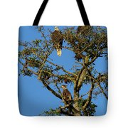 Eagles Tote Bag