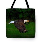 Eagle's Grace Tote Bag