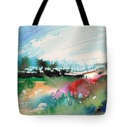 Early Afternoon 13 Tote Bag