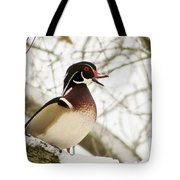 Early Arrival Tote Bag