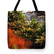 Early Autumn Along The Naugatuck Tote Bag