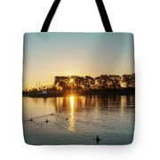 Early Birds In Teal And Orange Tote Bag