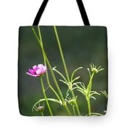 Early Bloomer Tote Bag