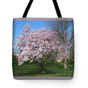 Early Blooms Tote Bag