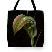 Early Cobra Orchid Tote Bag