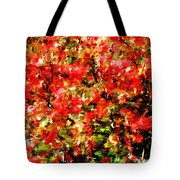 Early Color Painting Tote Bag