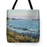 Early Evening At Gratwick Waterfront Park Tote Bag