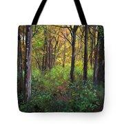 Early Fall Tote Bag