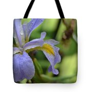Early Iris Tote Bag
