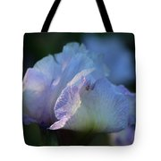 Early Iris Sunshine Tote Bag