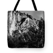 Early Morining Zion B-w Tote Bag