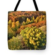 Early Morning At Dallas Divide Tote Bag