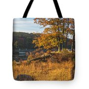 Early Morning Blaze Tote Bag