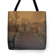 Early Morning Driveway Tote Bag