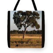 Early Morning Feed Tote Bag
