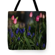 Early Morning Garden Tote Bag