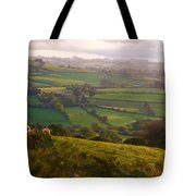 Early Morning Glory Tote Bag