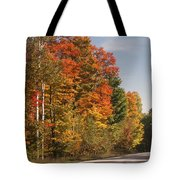 Early Morning In Door County Tote Bag by Sandra Bronstein