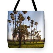 Early Morning In Santa Barbara Tote Bag