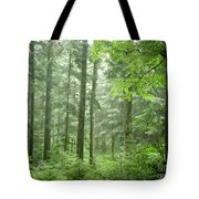 Early Morning In Swiss Forest Tote Bag