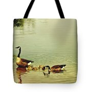 Early Morning Lessons Tote Bag