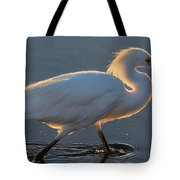 Early Morning Light On Egret Tote Bag
