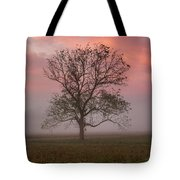 Early Morning Promises Tote Bag